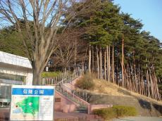 福島大学 (39)