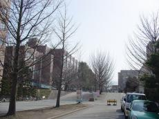 山形大学小白川 (2)