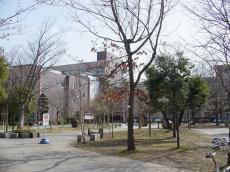 山形大学小白川 (23)