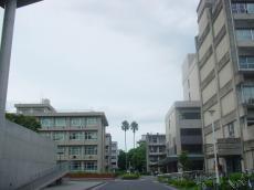 鹿児島大学郡元キャンパス (22)