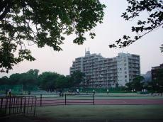 東京大学駒場 (27)