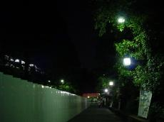 早稲田大学戸山 (4)