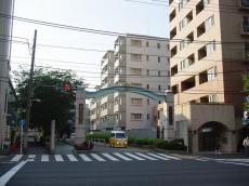 星薬科大学 (3)