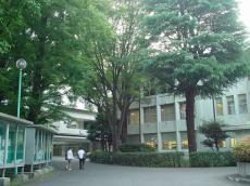 星薬科大学 (9)