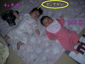 SANY0026_20090926110158.jpg