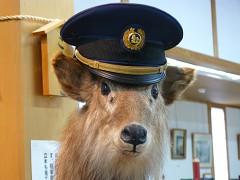 駅長さんの帽子