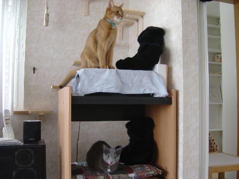 アパート全像(2008.11.08)