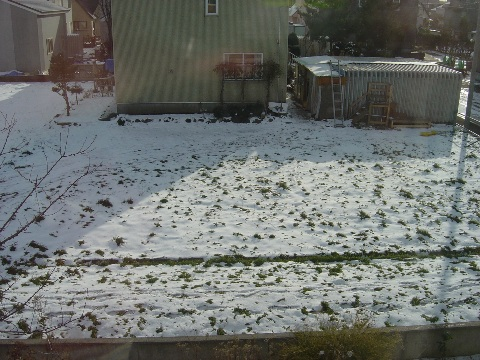 今朝の雪景色(2008.11.22)