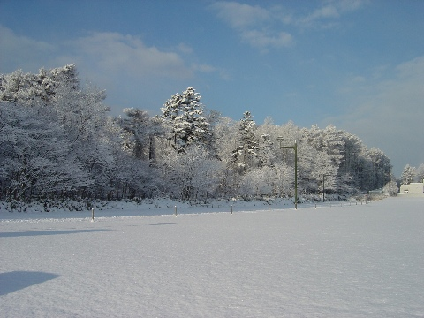 職場地方02(2008.12.15)