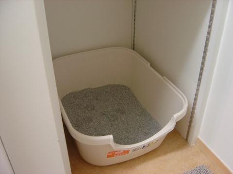 屋根を外したトイレ(2009.01.03)