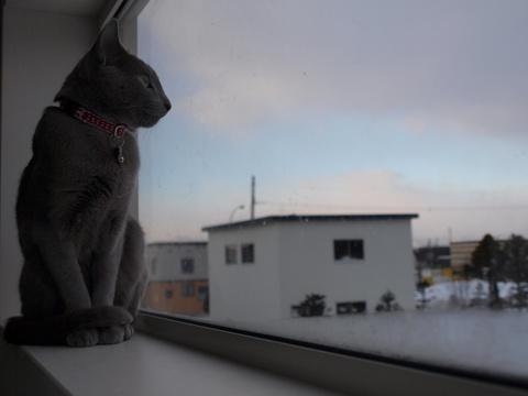 お外見04(2009.02.04)