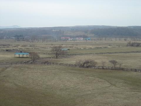 春の牧場(2009.04.04)