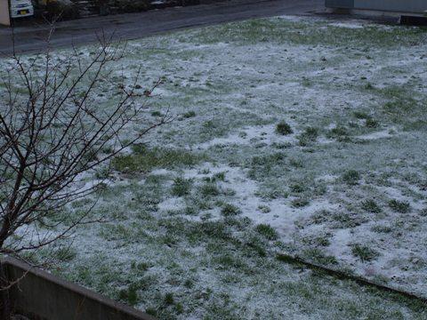 4月の雪(2009.04.26)