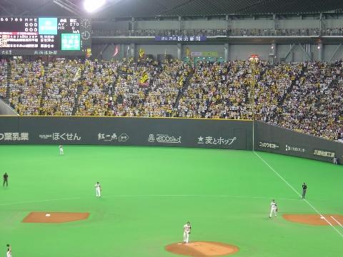 黄色いスタンド(2009.05.30)