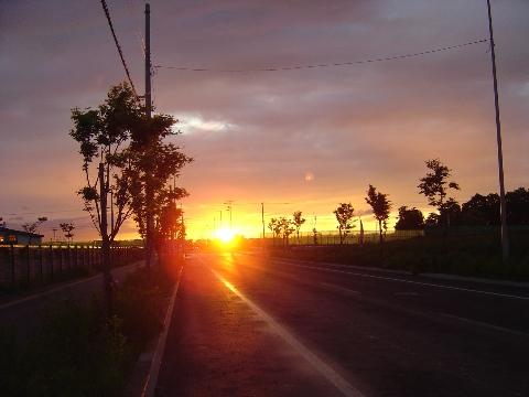 夕陽(2009.06.15)