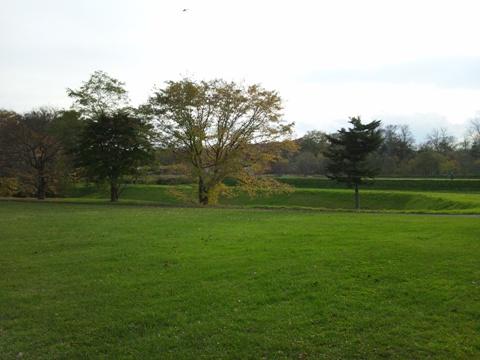 秋の風景02(2011.10.28)