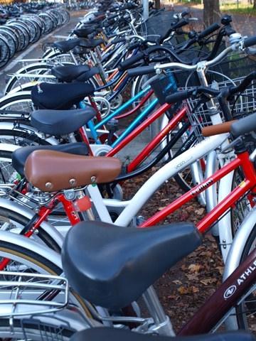 自転車たち(2011.11.04)