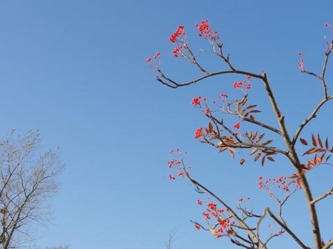 職場風景01(2011.11.11)
