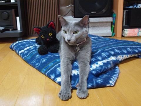 大きくなったね04(2011.11.19)