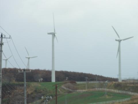 風車群(2011.11.20)