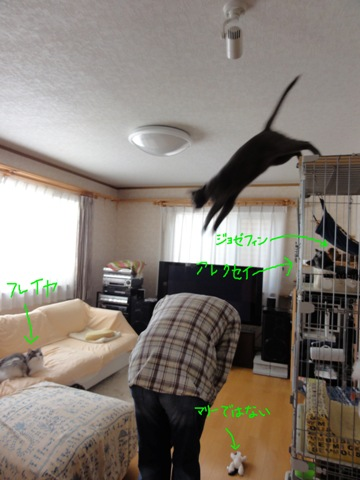 みんにゃいるよ(2011.12.11)