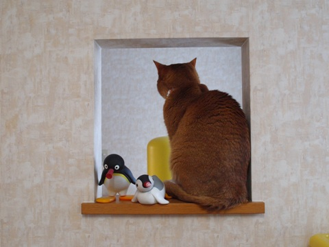 のぞき窓にて01(2011.12.14)