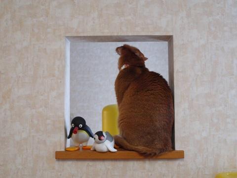 のぞき窓にて02(2011.12.14)