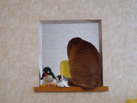 のぞき窓にて03(2011.12.14)