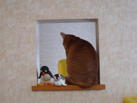 のぞき窓にて04(2011.12.14)