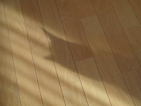 冬の猫神様05(2011.12.17)