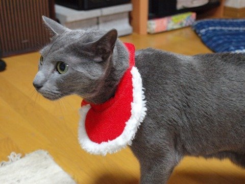 クリスマスのコスプレ11(2011.12.18)