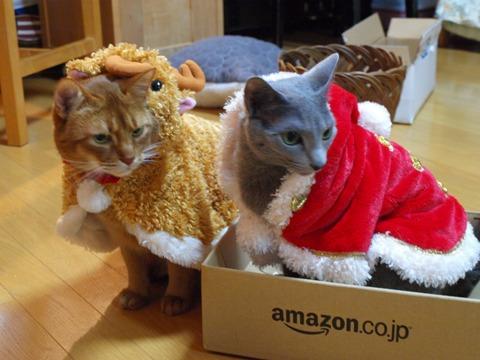 クリスマスのコスプレ12(2011.12.18)