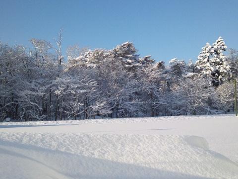 職場地方・朝(2012.01.10)