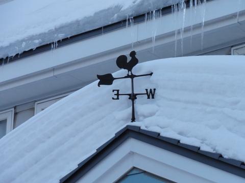 真冬の図02(2012.02.18)