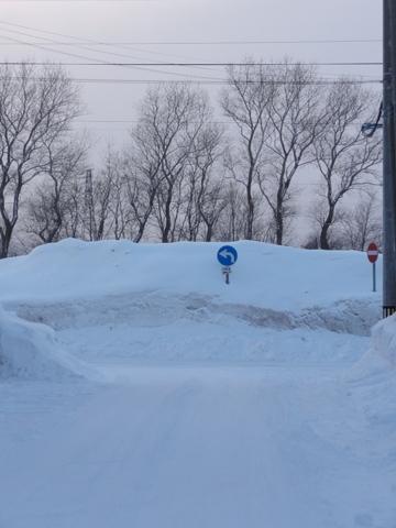 真冬の図03(2012.02.18)