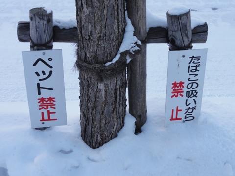 真冬の図05(2012.02.18)