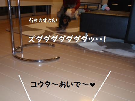 1-090207001.jpg