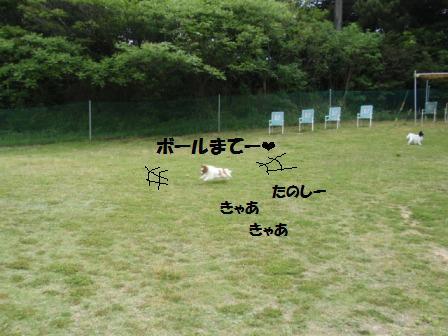 2-20080504008.jpg