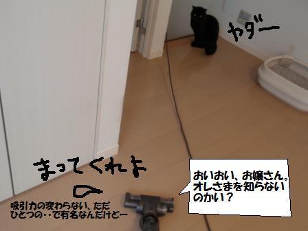 3-091024031.jpg