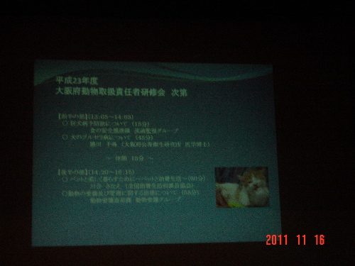 DSC04121.jpg