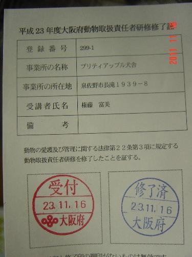 DSC04126.jpg