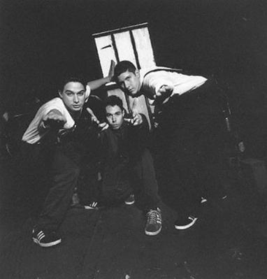 Beastie+Boys+30336_lg.jpg