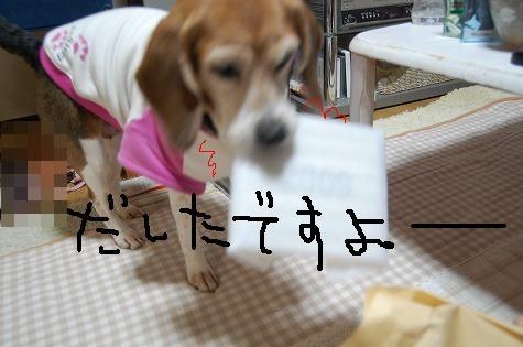 123_20090114180003.jpg