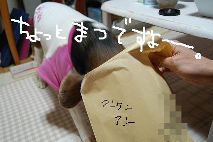 DSC_7041.jpg