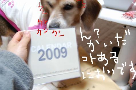DSC_7051.jpg
