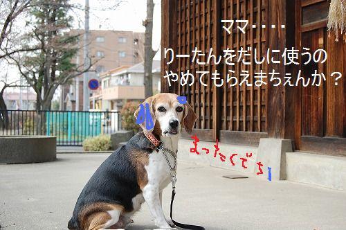 DSC_9686.jpg