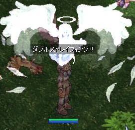 20080229214735.jpg