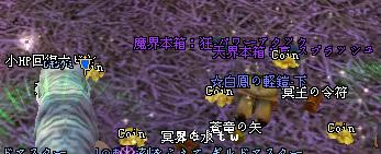 20080625_2.jpg