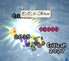 ぎゃー!(つД`)
