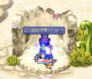2007111215.jpg